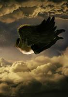 Fly Ahead by ImFayth