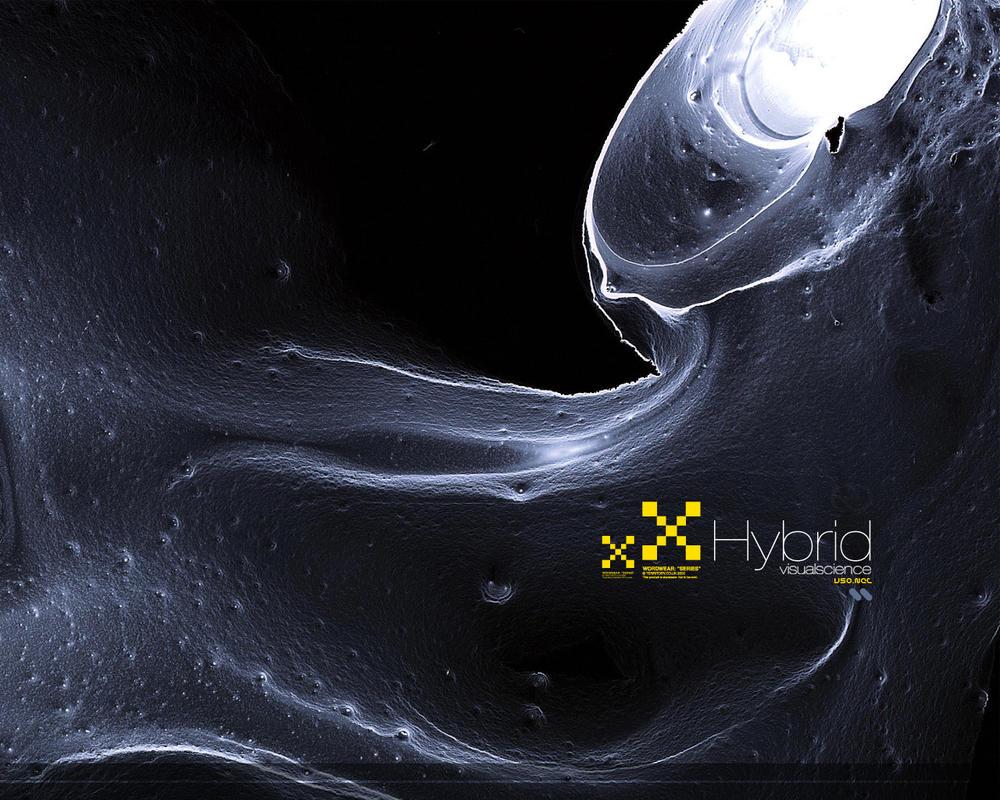 Hybrid by pete-aeiko