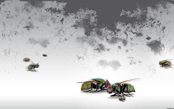 Dead Flies +clean version+