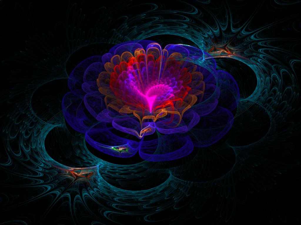 Lotus Flower By Luisbc On Deviantart