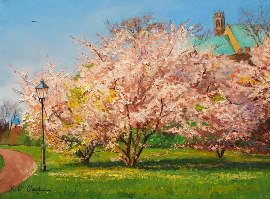 Spring in Magdeburg II by Dreamnr9