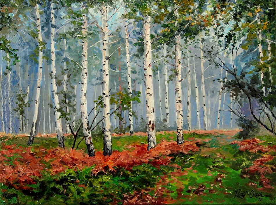 Birch forest by Dreamnr9