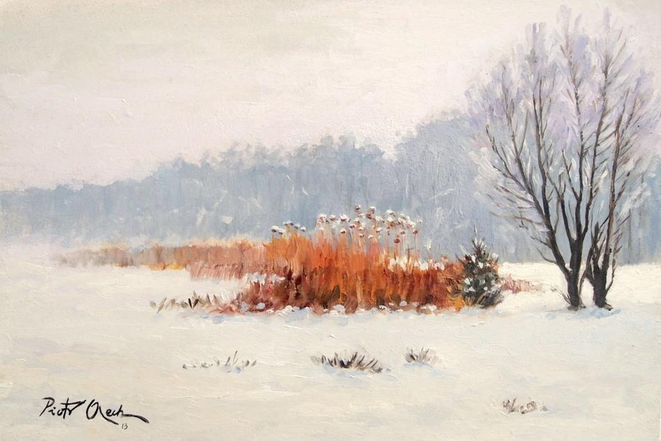 Snow by Dreamnr9