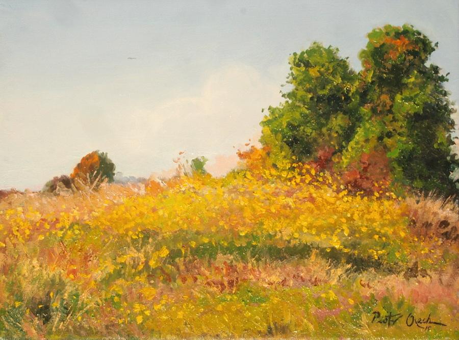 Midsummer by Dreamnr9