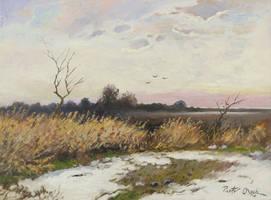 Winter landscape by Dreamnr9