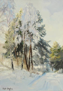 Winter in the country side