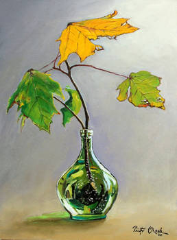 Autumn colors of maple, Liscie Klonu