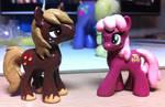 Pony Swag