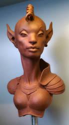 Dark Elf by JoynerStudio