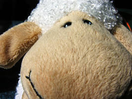 Snuggle Sheep by Elin-Darling