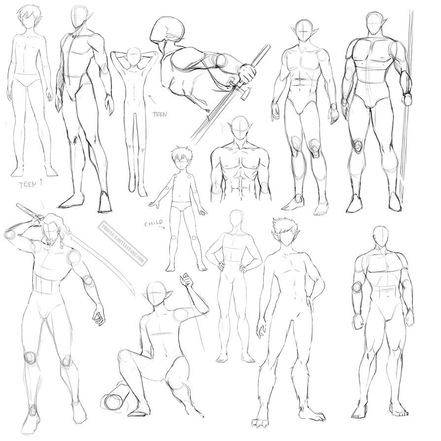 Male anatomy by Precia-T