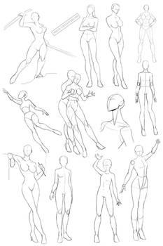 Female anatomy 2