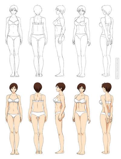 Anime Anatomy Full Body Commission By Precia T