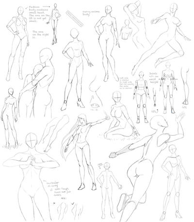 Contemporary Female Anatomy Reference For Artists Ideas - Anatomy ...