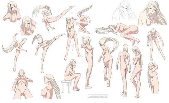 Female anatomy 6 Colored