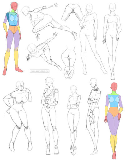 Female anatomy 8 by Precia-T