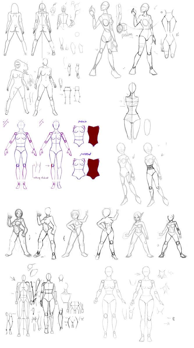 Anatomy tuning example by Precia-T on DeviantArt