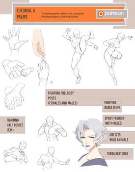 February tutorials (Fighting/palms)