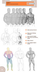Male anatomy by Precia-T