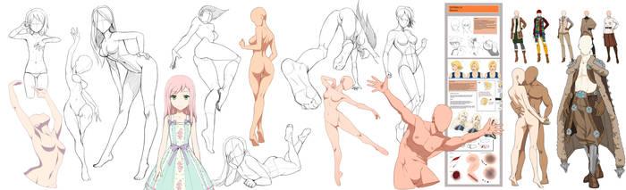 Anatomy so much by Precia-T