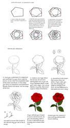 Rose tutorial by Precia-T