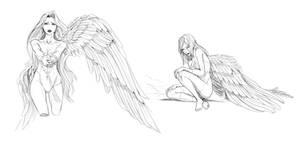 Fallen angels - video process