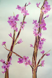 Branch and Pink Flowers