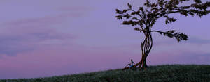 A sunset landscape