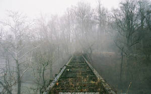 Old wooden bridge by NickACJones