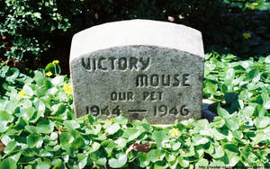OPC - Victory Mouse by NickACJones