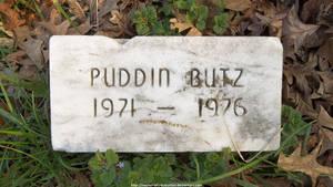 Puddin Butz by NickACJones