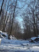 Frozen stream by NickACJones