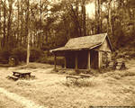 Old-timey cabin