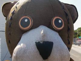 Bear stare by NickACJones