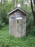 Overgrown outhouse