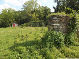 Overgrown foundation by NickACJones
