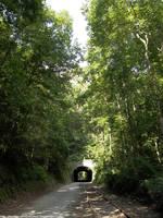 Howard Tunnel by NickACJones