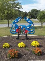 Community crab by NickACJones