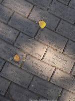 Military memorial bricks by NickACJones
