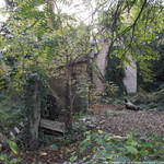 Gardener's cottage backyard