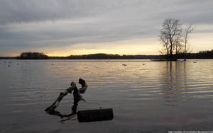 Floating logs by NickACJones