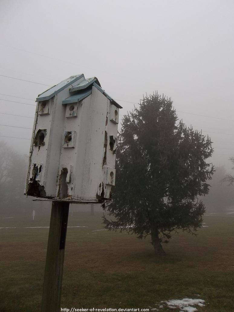 Decaying bird multiplex by seeker-of-revelation