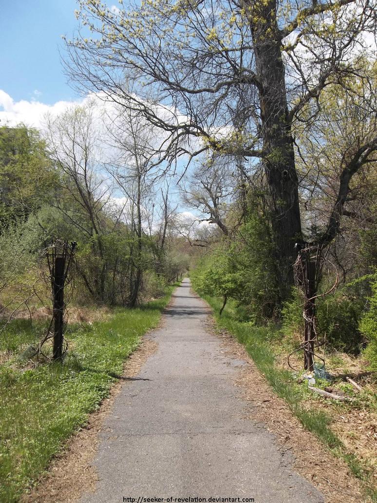 Gravevine path by NickACJones
