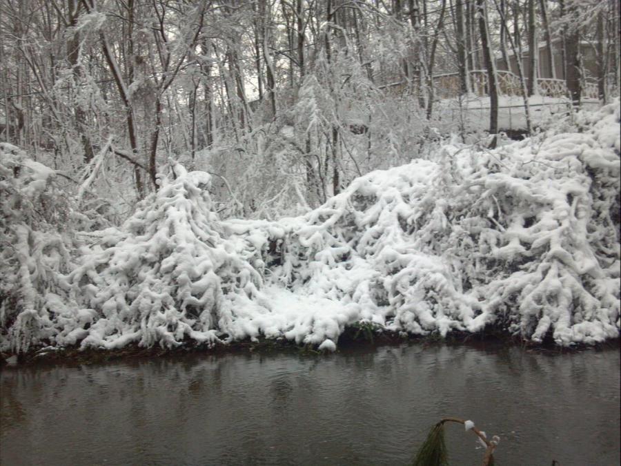 Snowy Creek I by SardonicSeraph