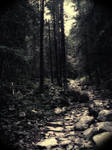 Deep in the Woods by NetGhost03