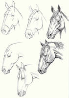 horse heads by naneste