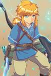 Link (Zelda : Breath Of Wild)