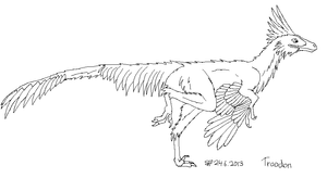 30DDC D19 Troodon