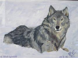 Wolf _ Lupo by Wolf-Spirit89