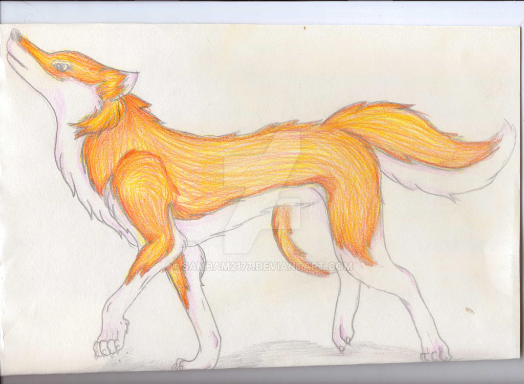 Holo the wise wolf by SamBam2177 on DeviantArt